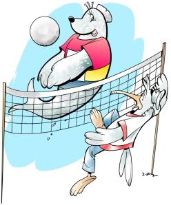 volleybollsand